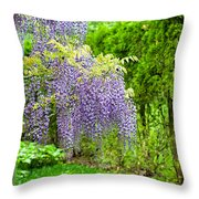 Nature's Waterfalls  By Zina Zinchik Throw Pillow