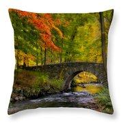 Natures Way Throw Pillow by Susan Candelario
