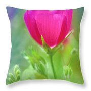 Natures Winecup South Texas Throw Pillow