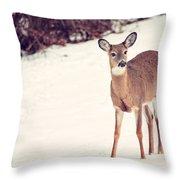 Natures Winter Visit Throw Pillow