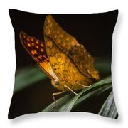 Nature's Wonders  Throw Pillow