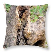 Nature's Wood Abstract Throw Pillow