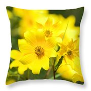 Natures Yellow Throw Pillow by Lori Tambakis