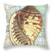 Nautical Journey-c Throw Pillow