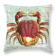Nautical Journey-g Throw Pillow by Jean Plout