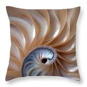 Nautilus Wave Throw Pillow
