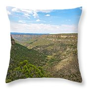 Navajo Canyon Overlook On Chapin Mesa Top Loop Road In Mesa Verde National Park-colorado Throw Pillow