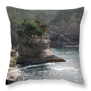 Neah Bay At Cape Flattery II Throw Pillow
