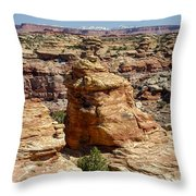 Near And Far Throw Pillow