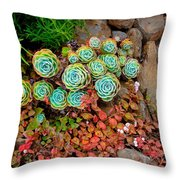 Near The Shire  Throw Pillow