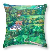 Near Tuggles Gap Throw Pillow