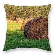 Nearing The Golden Hour 3d21653 Throw Pillow