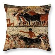 Nebamun Inspecting Flocks Throw Pillow by RicardMN Photography