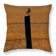 Nebraska's Bird Throw Pillow