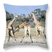 Necking Giraffes Botswana Throw Pillow