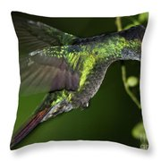Nectar Feeding Hummingbird Throw Pillow