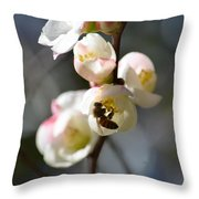 Nectar Hunting In Spring 2013 Throw Pillow