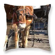 Need A Rest Throw Pillow
