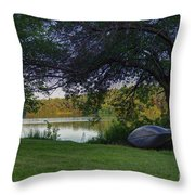 Need To Float 20140718 Throw Pillow