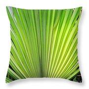 Needle Palm Throw Pillow
