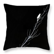 Negative State Of Mind Throw Pillow