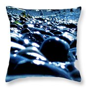 Neighborhood 8 - Seagull Throw Pillow