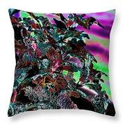 Neon Coleus Throw Pillow