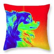 Neon Papillion Throw Pillow