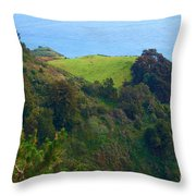 Nepenthe View At Big Sur In California Throw Pillow