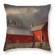 Nescopeck Duck Barn Throw Pillow