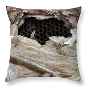 Nest And Combs Throw Pillow