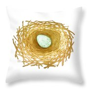 Nest And Egg Throw Pillow