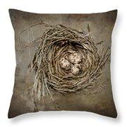 Nest Eggs Throw Pillow