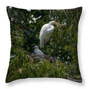Nest Lookout Throw Pillow