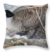 Nester Throw Pillow