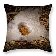 Nesting Leaf Throw Pillow