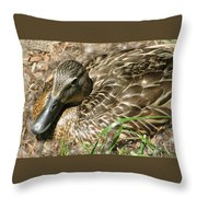 Nesting Mallard Throw Pillow