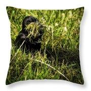 Nesting Material Throw Pillow