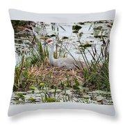Nesting Sandhill Crane Throw Pillow