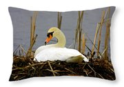 Nesting Swan Throw Pillow