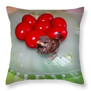 Nestling And Red Eggs Throw Pillow