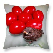 Nestling In A Plate Throw Pillow