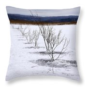 Network Pathway Throw Pillow