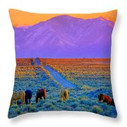 Wild Horse Country  Throw Pillow by Jeanne  Bencich-Nations