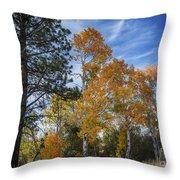 Nevada Fall Colors Throw Pillow