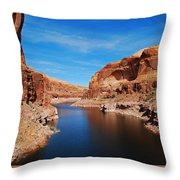 Never Ending Waterways Throw Pillow