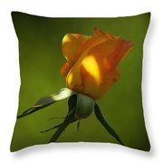 Never Lose Your Love Throw Pillow