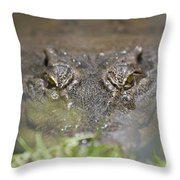 Never Smile At A Crocodile Throw Pillow