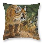 New Adventures - Cougar Cub Throw Pillow