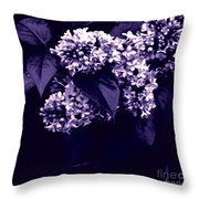 New Begining  Throw Pillow